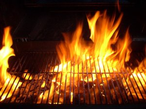 bbq_fire_stock_17_by_hummingbird88_stock